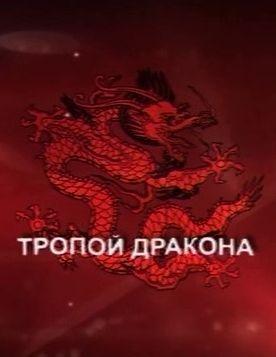 Скачать с letitbit Тропой дракона (2011)