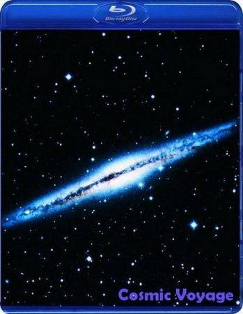 Скачать с letitbit Космическое путешествие (2010)
