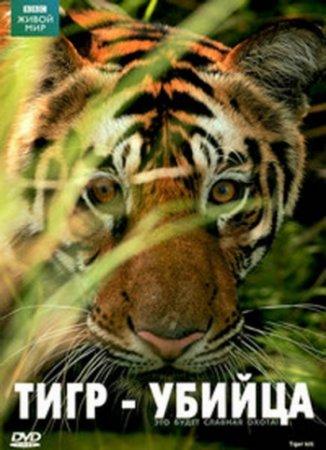 Скачать с letitbit Живой мир. Тигр - убийца (2007) DVDRip
