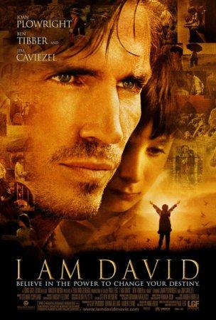 Скачать фильм Меня зовут Дэвид (2003)