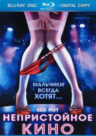 Скачать с letitbit Непристойное кино (2009)
