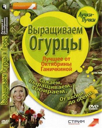 Скачать с letitbit Лучшее от Октябрины Ганичкиной: Выращиваем огурцы (2008) DVDRip