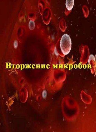 Скачать с letitbit  Вторжение микробов / Microbe Invasion (2006)