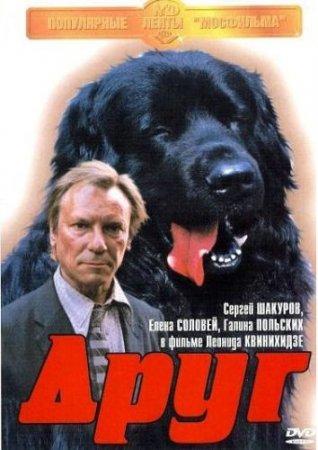 Скачать фильм Друг (1987)
