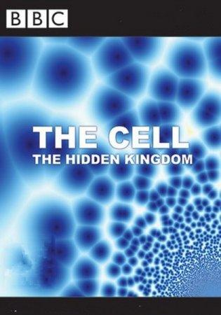 Скачать с letitbit Клетка, или Из чего состоит жизнь  (2009)