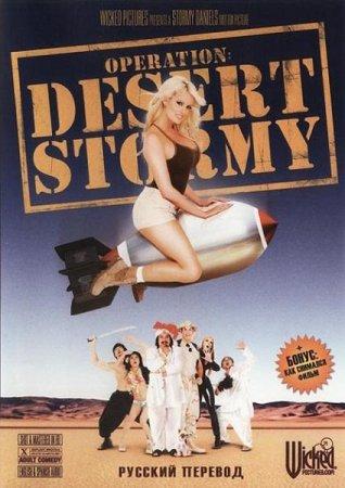 Скачать с letitbit Operation. Desert Stormy [2007] DVDRip