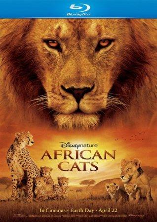 Скачать с letitbit  Африканские кошки: Королевство смелости / African Cats  ...