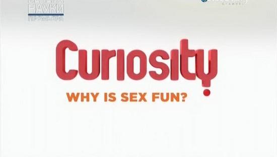 За что мы любим секс вшысщмукн