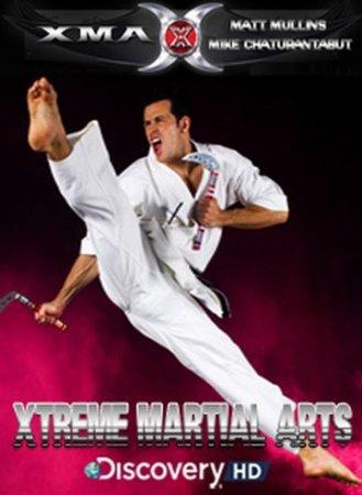 Скачать с letitbit Экстремальные боевые искусства (2003)