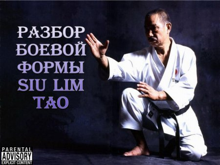 Скачать с letitbit Разбор боевой формы Siu Lim Tao [2011, RUS]
