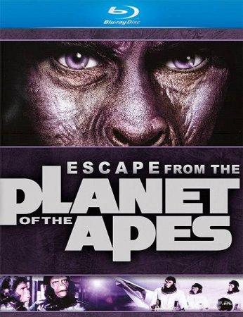Скачать фильм Бегство с планеты обезьян (1971)