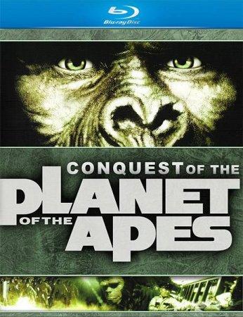 Скачать фильм Покорение планеты обезьян (1972)