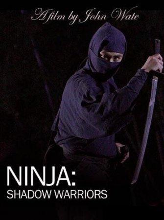 Скачать Ниндзя. Воины-тени [2011] SATRip