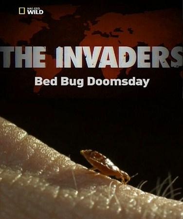 Скачать с letitbit  Захватчики: Судный день клопов / The Invaders: Bed Bug  ...