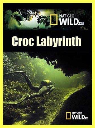 Скачать с letitbit  Крокодиловый лабиринт / Croc Labyrinth (2011) SATRip