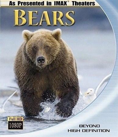 Скачать с letitbit  Медведи / Bears (2001) BDRip 720p