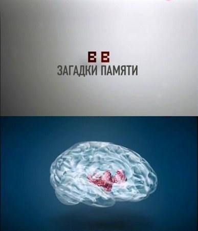 Скачать с letitbit  Медицина. Загадки Памяти (2012) SATRip