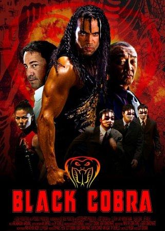 Скачать с letitbit Черная кобра (2012)