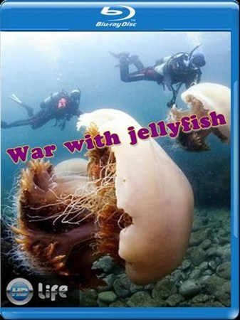 Скачать с letitbit  Война с медузами / War with jellyfish (2012) HDTVRip