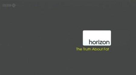 Скачать с letitbit  Вся правда об ожирении / Horizon: The Truth about Fat ( ...