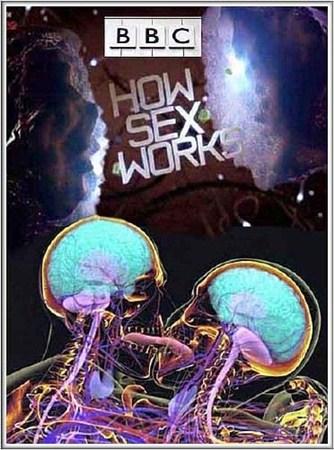 Скачать с letitbit  ВВС: Как действует секс / ВВС: How Sex Works (2012) SAT ...