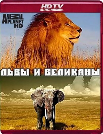 Скачать с letitbit  Львы и Великаны / Lions and Giants on the Edge (2008)   ...