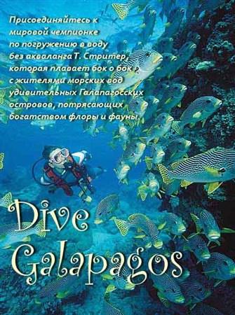 Скачать с letitbit  BBC: Подводный мир Галапагосов / ВВС: Dive Galapagos (2 ...