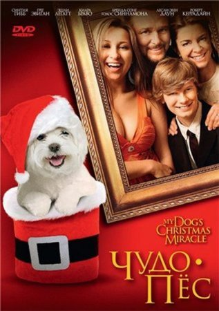 Скачать с letitbit  Чудо-пёс (2011)