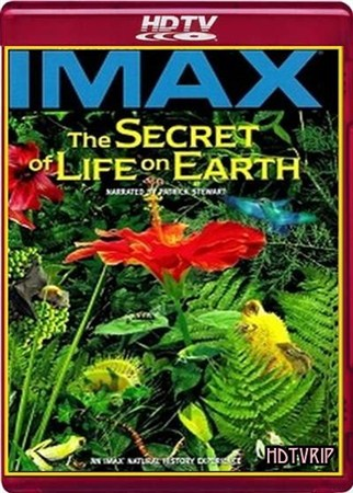 Скачать с letitbit  Тайна жизни на Земле / IMAX. The Secret Of Life On Earth (1993) HDTVRip