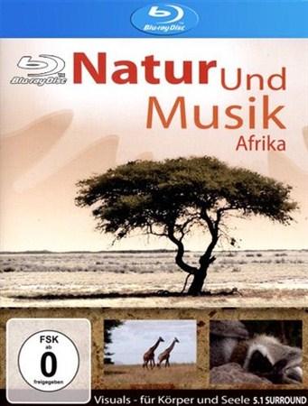 Скачать с letitbit  Природа и музыка Африки / Natur und Musik Afrika (2007) ...