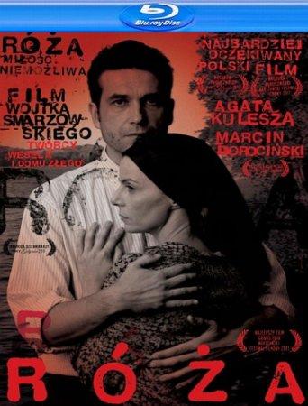 Скачать фильм Роза (2011)