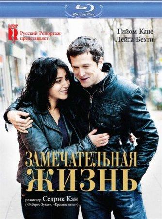 Скачать фильм Замечательная жизнь (2011)