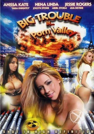 Скачать с letitbit  Big Trouble In Porn Valley (2012/DVDRip)