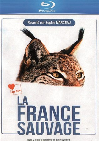 Скачать с letitbit  Дикая Франция / La France Sauvage (2012/HDRip)