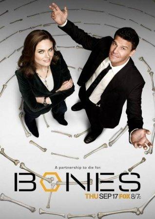 Скачать с letitbit  Кости / Bones - 8 сезон (2012)