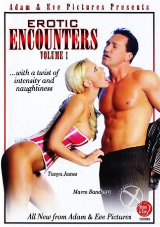 Скачать с letitbit Erotic Encounters [2012] DVDRip