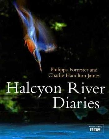 Скачать с letitbit  Дневник безмятежной реки: осень - зима / Halcyon River  ...