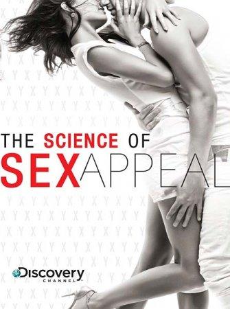 Скачать Наука сексуальной привлекательности (2010)