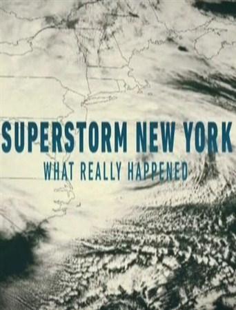 Скачать с letitbit  Разрушительный ураган Сэнди [2012, SATRip]