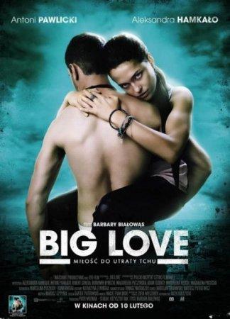 Скачать фильм Большая любовь / Сука любовь / Big Love (2012)