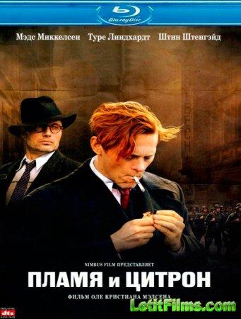 Скачать фильм Пламя и Цитрон (2008)