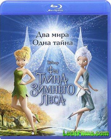 Скачать мультфильм Феи: Тайна зимнего леса (2012)