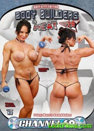 Скачать с letitbit Body Builders In Heat 29 [2012] DVDRip