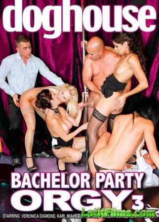 Скачать с letitbit Bachelor Party Orgy 3 [2011] DVDRip