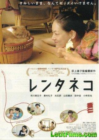 Скачать фильм Кошка напрокат (2012)