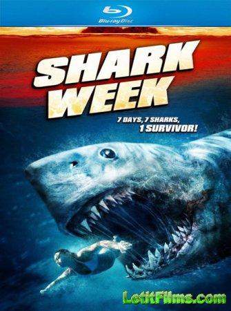 Скачать с letitbit Неделя акул / Shark Week (2012)