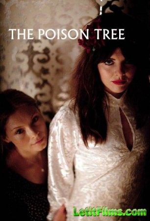 Скачать с letitbit  Ядовитое дерево - 1 сезон (2012)