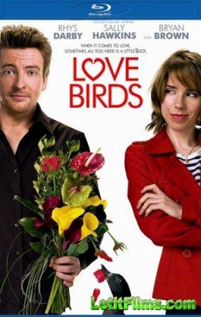 Скачать с letitbit Любовные пташки (2011)