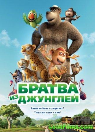 Скачать мультфильм Братва из джунглей (2012)
