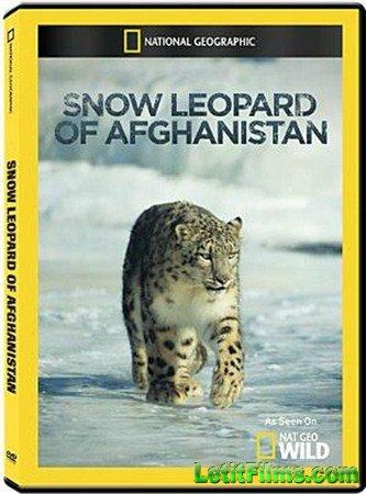 Скачать с letitbit  National Geographic: Снежный барс Афганистана / Nationa ...